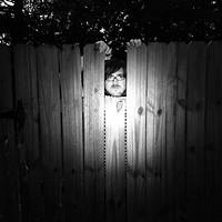 Matt Hollywood // Phobophobes  // Yassassin in Bristol