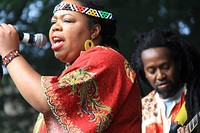 Bulawayo Summer Fundraiser (for Budiriro Trust) in Bristol