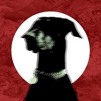 Magoo: Dom Saad Album Launch w/ Green Hands & more in Bristol