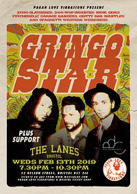 Gringo Star in Bristol