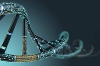Psychology of Searching: Ethical Dilemmas of DNA in Bristol