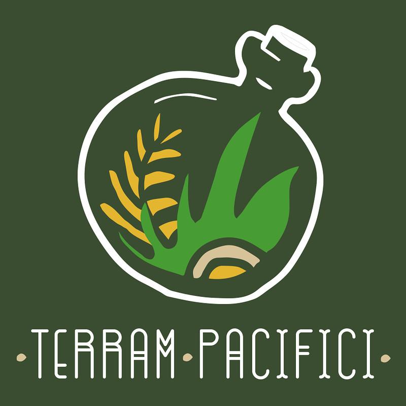 Terrarium Workshop with Vegan Canapés and Prosecco in Bristol 2019