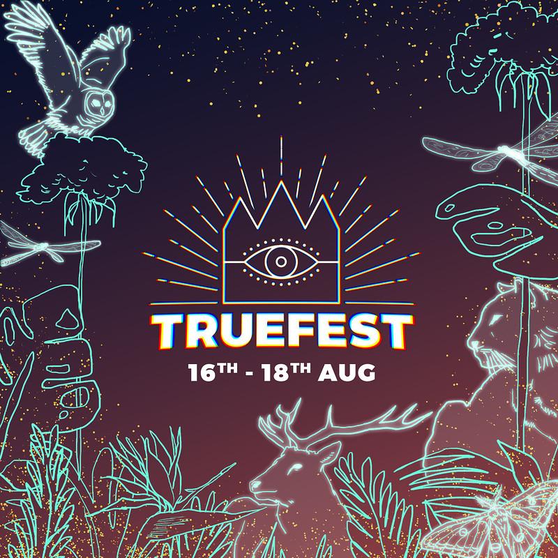 TRUEFEST in Bristol 2019