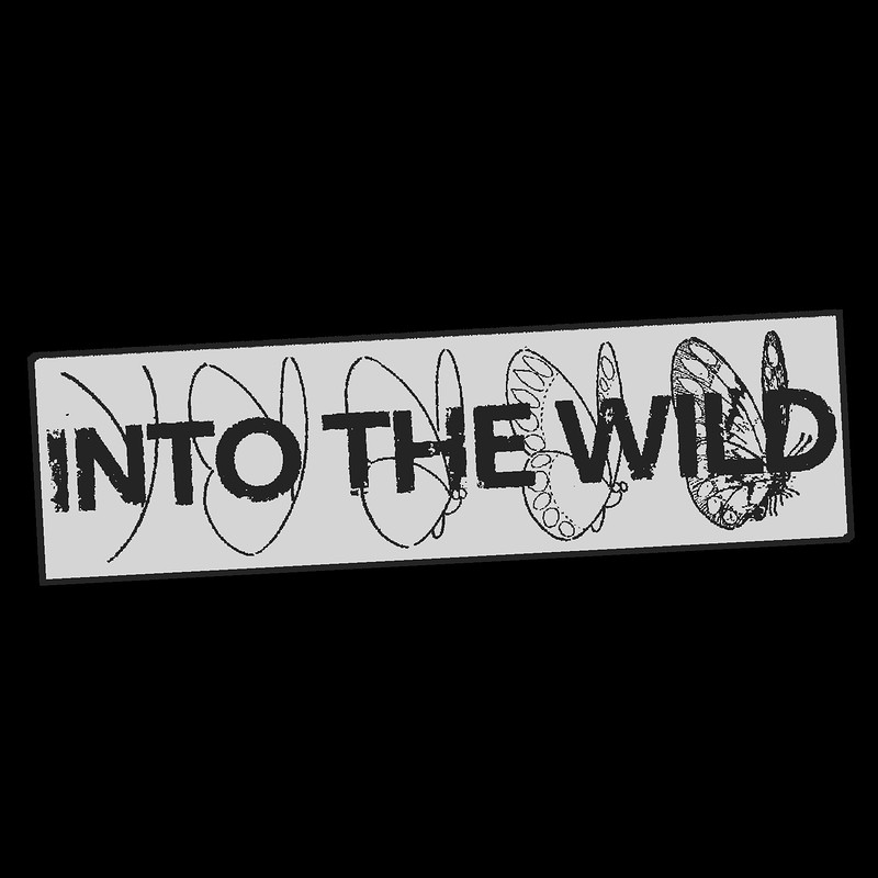 Into The Wild - Launch Party in Bristol 2019