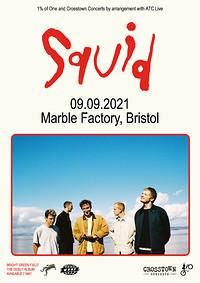Squid in Bristol