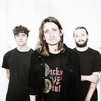 POISONOUS BIRDS + DELAY GROUNDS (SOLD OUT) in Bristol