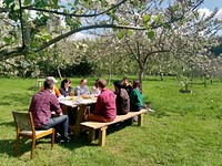 Pitchfork Cafe's Spring Blossom Feast in Bristol