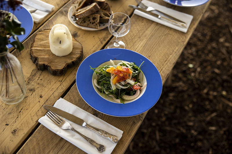 Summer Feast at Sims Hill in Bristol 2021