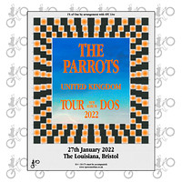 The Parrots in Bristol