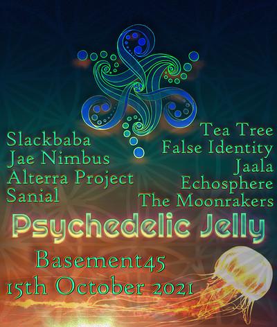 Psy Jelly ft. Slackbaba, Jae Nimbus, Tea Tree + at Basement 45 in Bristol