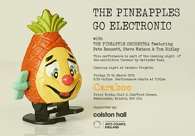 The Pineapples Go Electric at Caraboo Projects in Bristol