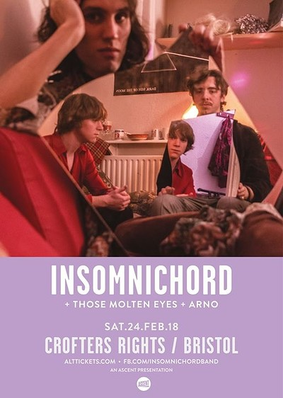 Insomnichord at Crofters Rights in Bristol