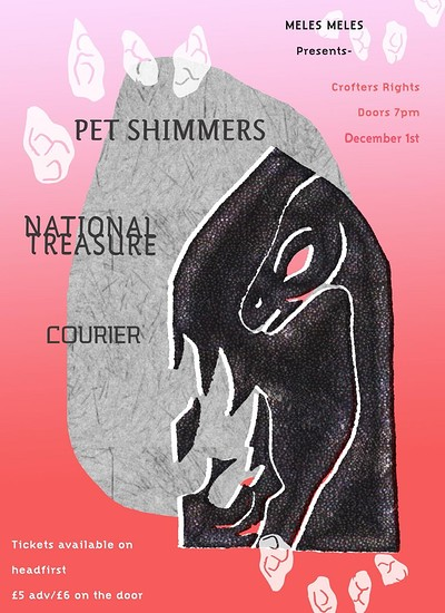 Pet Shimmers - National Treasure - Courier at Crofters Rights in Bristol