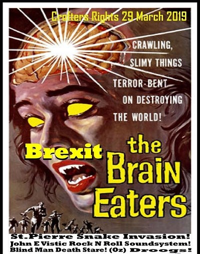 The Brexit PUNK ROCK Break Down! at Crofters Rights in Bristol
