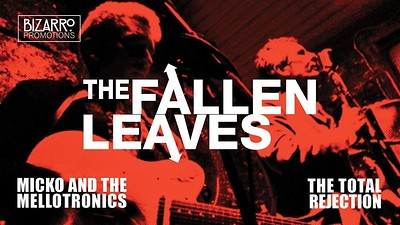 The Fallen Leaves at Crofters Rights in Bristol