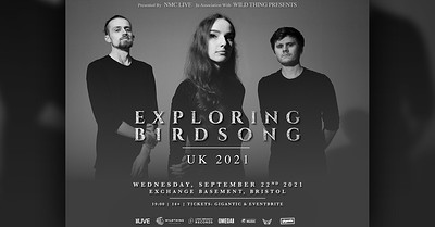 Exploring Birdsong at Exchange in Bristol
