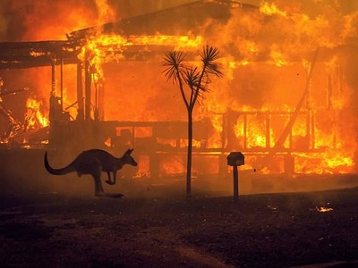 Jungle Ain't Massive / AustralianBushfireFundraise at Lakota in Bristol