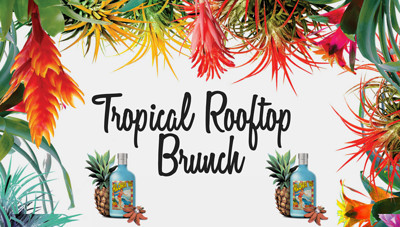 Tropical Rooftop Brunch  at Radnor Rooms in Bristol