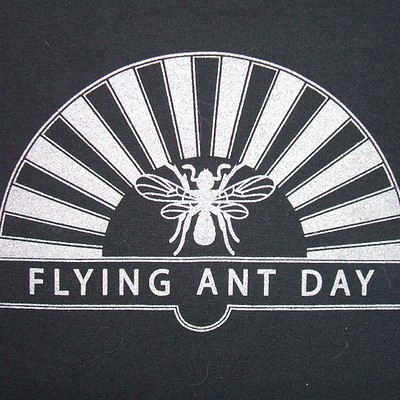 Smokin' Pilchards plus Flying Ant Day  at The Golden Lion in Bristol