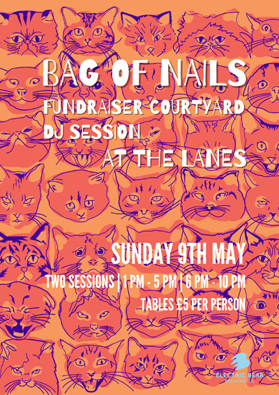 Bag Of Nails Fundraiser Courtyard DJ Session at The Lanes in Bristol