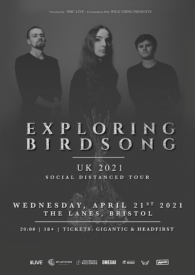 Exploring Birdsong at The Lanes in Bristol