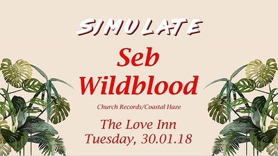 Simulate Presents: Seb Wildblood at The Love Inn in Bristol