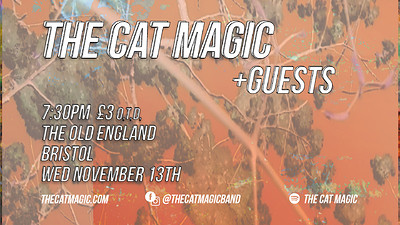 The Cat Magic at The Old England Pub in Bristol