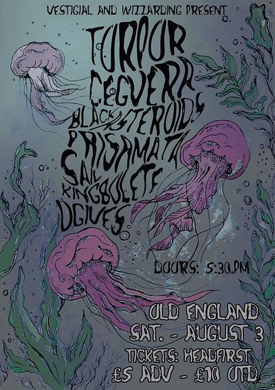 Vstgl & WP: Sludge all-dayer ft. Torpor & more at The Old England Pub in Bristol