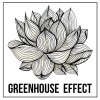 Greenhouse Effect Launch Party at Basement 45 in Bristol