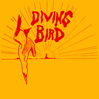 Idle Hands pres. Diving Bird w/ Andy Mac & Ossia at Cosies in Bristol