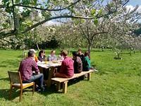 Pitchfork Cafe's Spring Blossom Feast at Grow Wilder, Bristol in Bristol