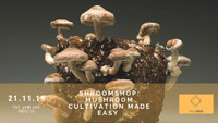 Shroomshop: Mushroom Cultivation Made Easy at Jam Jar in Bristol