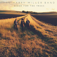 IT: Breakout Blues Band & The Harry Miller Band at Mr Wolfs in Bristol