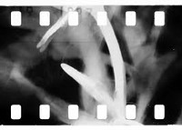 Analogue Film - workshops and screening at The Brunswick Club in Bristol