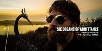 Six Organs of Admittance at The Louisiana in Bristol